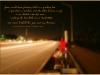 ONE_TIME_ONE_NIGHT_LOS_LOBOS